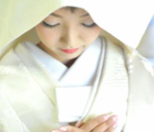 白無垢       (white kimono)のイメージ